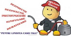 Voileana Service